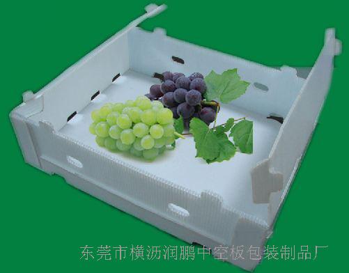 东莞市横沥润鹏中空板包装制品厂